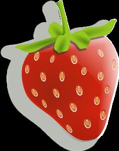 Leckere Erdbeere für den Mixer