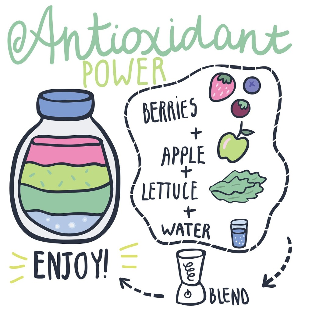 Standmixer Antioxidant Smoothie Grafik